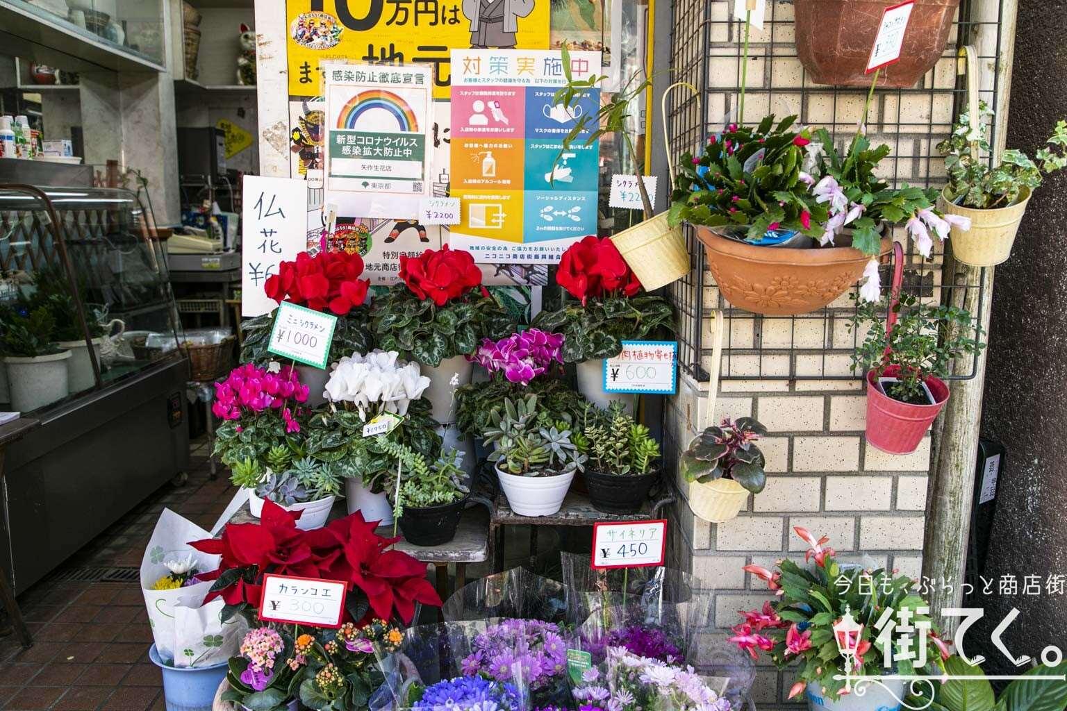 矢作生花店